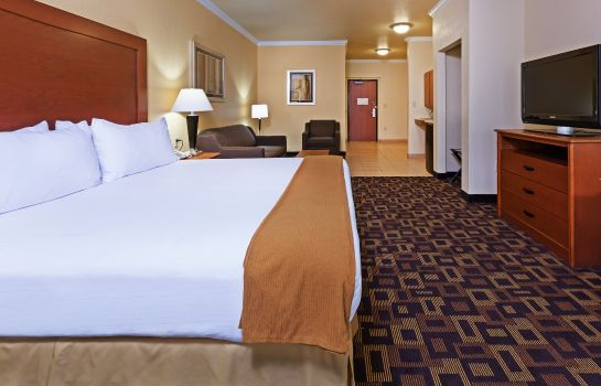 Suite Holiday Inn Express & Suites AUSTIN-(NW) HWY 620 & 183