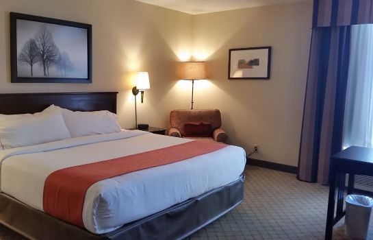 Zimmer Holiday Inn Express NASHVILLE-DOWNTOWN