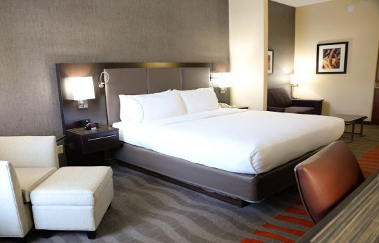Suite Holiday Inn Express & Suites DAYTON-CENTERVILLE