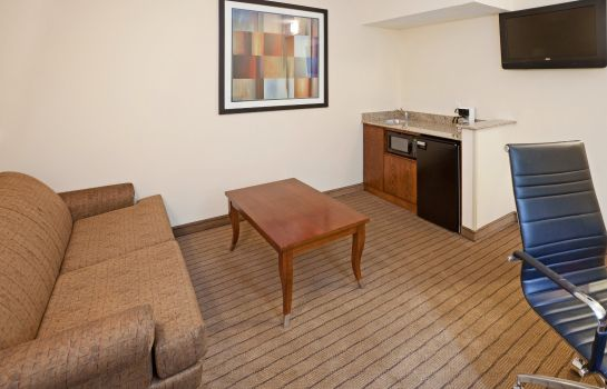 Suite Holiday Inn Express & Suites DALLAS PARK CENTRAL NORTHEAST