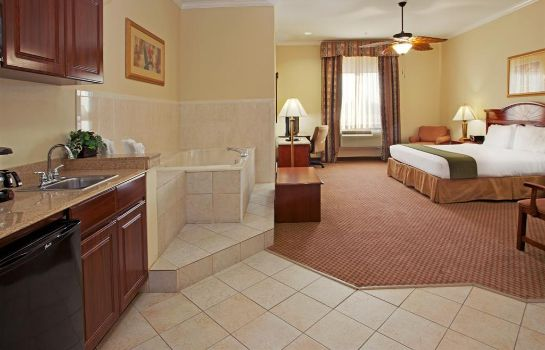 Suite Holiday Inn Express & Suites HOUSTON EAST