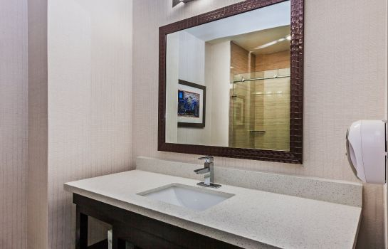 Info Holiday Inn Express & Suites HOUSTON EAST