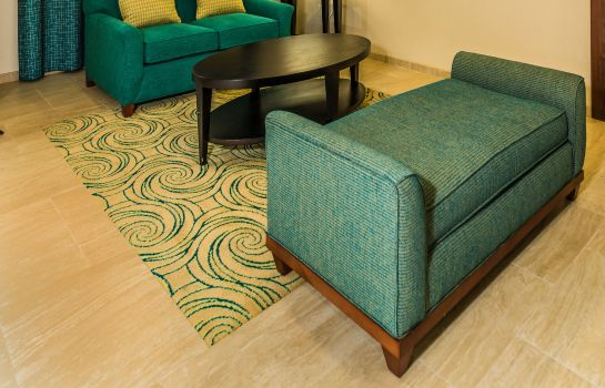 Hotelhalle Holiday Inn Express & Suites JACKSONVILLE - BLOUNT ISLAND