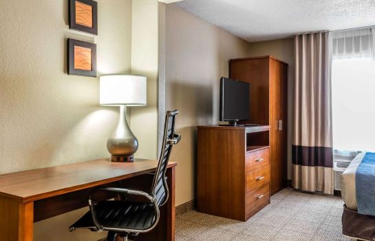 Suite Comfort Inn and Suites Airport-American