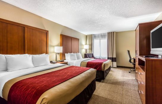 Chambre Comfort Inn & Suites Airport-American Way