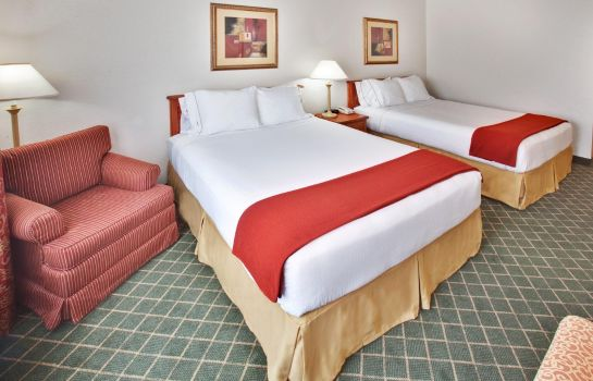 Suite Holiday Inn Express & Suites OMAHA WEST