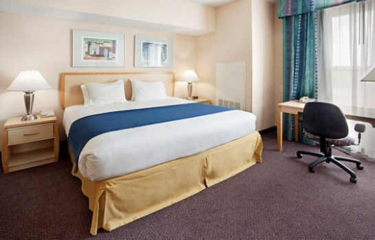 Suite Holiday Inn Express & Suites SAN ANTONIO RIVERCENTER AREA
