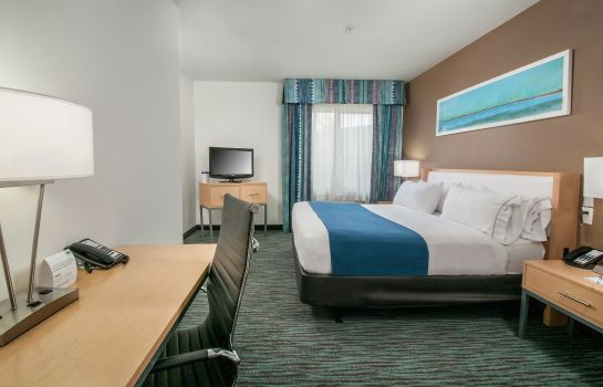 Zimmer Holiday Inn Express & Suites SAN ANTONIO RIVERCENTER AREA