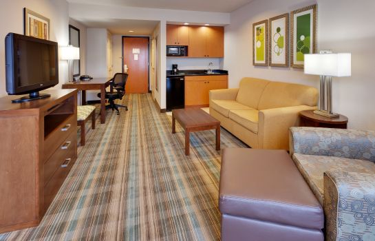 Suite Holiday Inn Express SAN FRANCISCO-AIRPORT NORTH