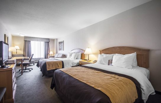 Kamers Comfort Inn and Suites Salmon Arm