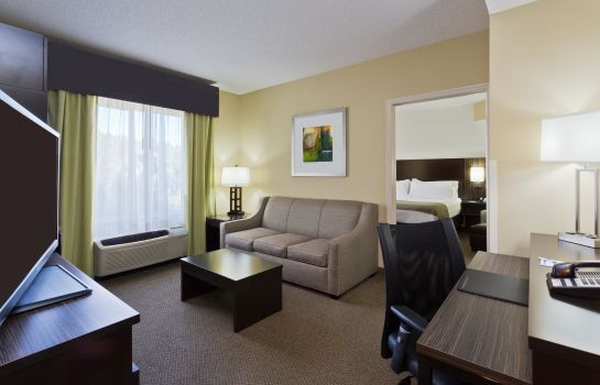 Suite Holiday Inn Express & Suites TAMPA-I-75 @ BRUCE B. DOWNS