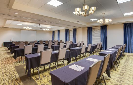 Sala de reuniones Holiday Inn Express & Suites TAMPA-I-75 @ BRUCE B. DOWNS