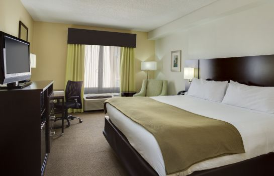 Habitación Holiday Inn Express & Suites TAMPA-I-75 @ BRUCE B. DOWNS