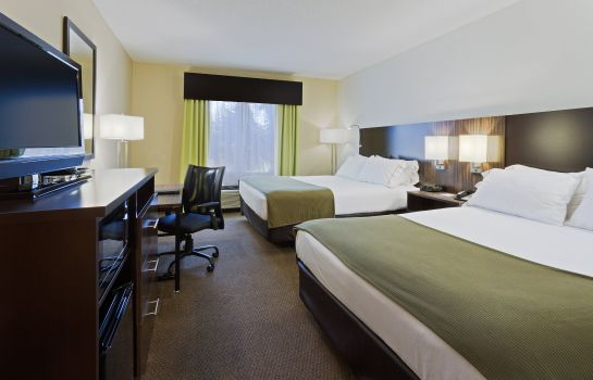 Zimmer Holiday Inn Express & Suites TAMPA-I-75 @ BRUCE B. DOWNS