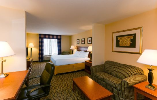 Suite Holiday Inn Express & Suites TAMPA-FAIRGROUNDS-CASINO