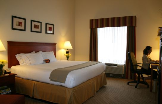 Zimmer Holiday Inn Express & Suites TAMPA-FAIRGROUNDS-CASINO