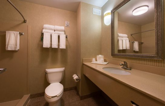 Zimmer Holiday Inn Express & Suites TAMPA-ANDERSON RD/VETERANS EXP