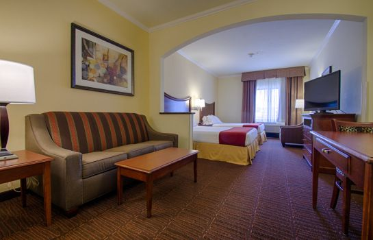 Zimmer Holiday Inn Express & Suites TUCSON MALL