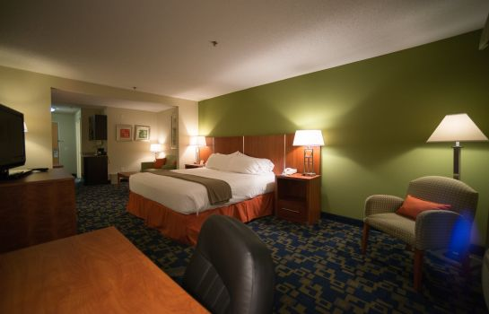 Suite Holiday Inn Express & Suites RALEIGH NORTH - WAKE FOREST
