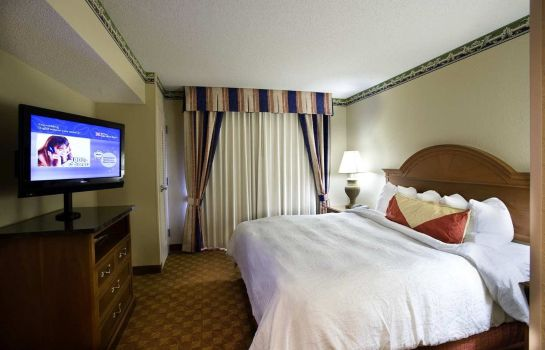 Zimmer Hilton Garden Inn Chattanooga Downtown