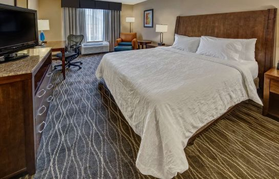 Habitación Hilton Garden Inn Houston-Bush Intercontinental Airport