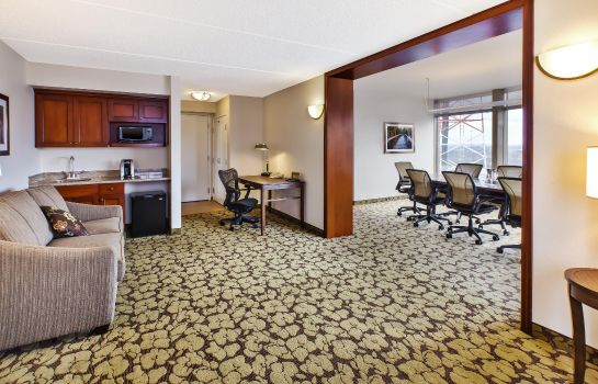 Suite Hilton Garden Inn Cleveland Downtown