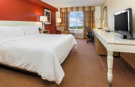 Zimmer Hilton Garden Inn Anchorage