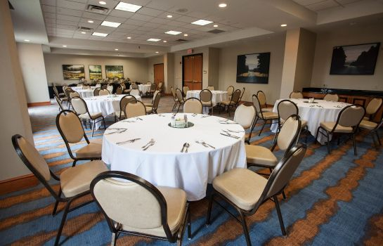 Conference room Hilton Garden Inn Louisville Airport