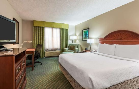Zimmer Hilton Garden Inn Orlando International Drive North