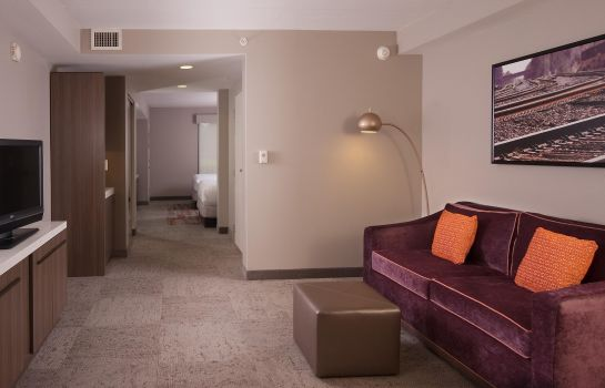 Suite Hilton Garden Inn Atlanta Airport-Millenium Center