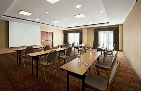 Conference room Hilton Garden Inn Houston/The Woodlands