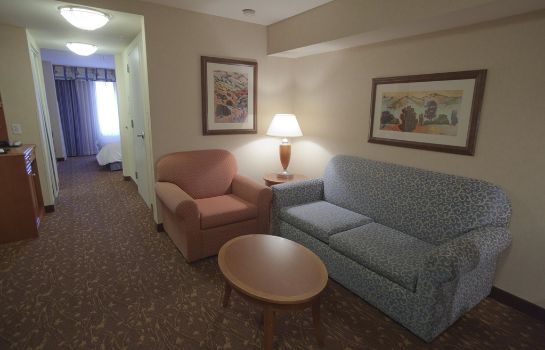 Suite Hilton Garden Inn Albuquerque-Journal Center