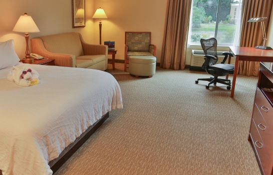Suite Hilton Garden Inn Savannah Airport