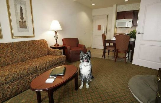 Suite Homewood Suites by Hilton Southwind - Hacks Cross