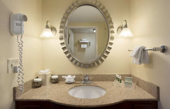 Suite Homewood Suites by Hilton Dulles-North-Loudoun