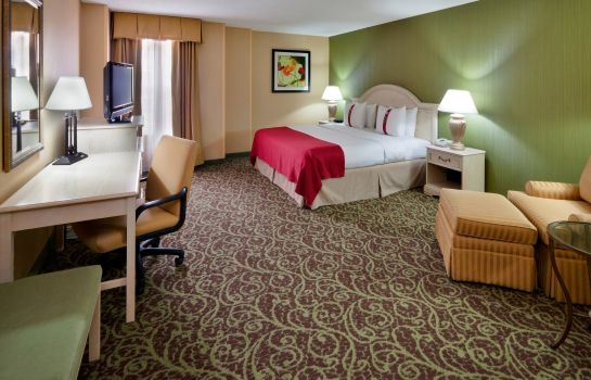 Zimmer Holiday Inn CHANTILLY-DULLES EXPO (ARPT)