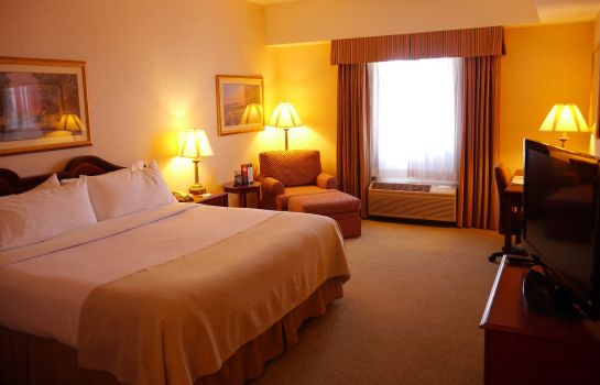 Room Holiday Inn LAFAYETTE-CITY CENTRE