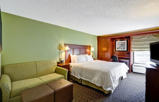 Suite Hampton Inn Birmingham-MTN Brook