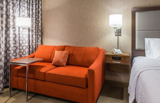 Suite Hampton Inn Buffalo-Airport-Galleria Mall NY