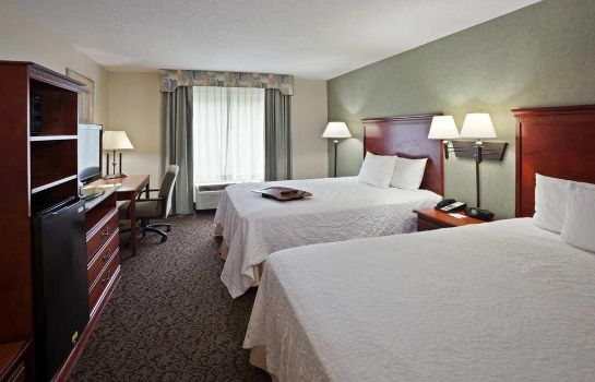 Suite Hampton Inn Ithaca