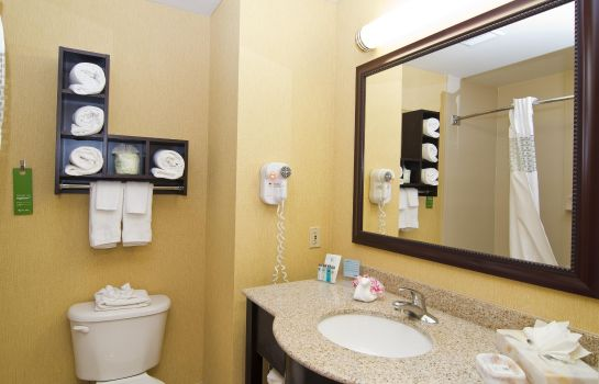 Kamers Hampton Inn - Suites Orlando International Drive North FL