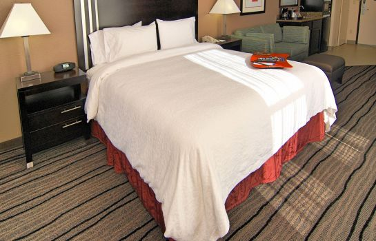Suite Hampton Inn - Suites Mountain View