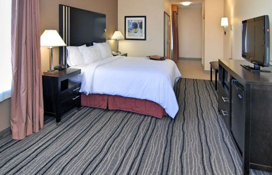Zimmer Hampton Inn - Suites Mountain View