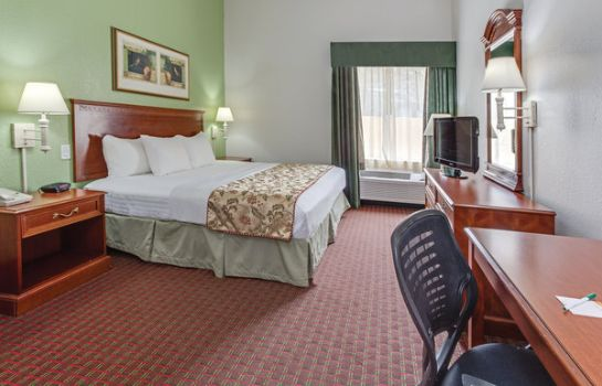 Suite La Quinta Inn and Suites Tampa Bay Area-Tampa South