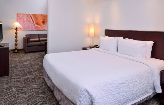 Zimmer SpringHill Suites Oklahoma City Airport