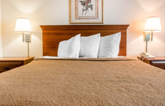 Room Quality Inn Hudsonville