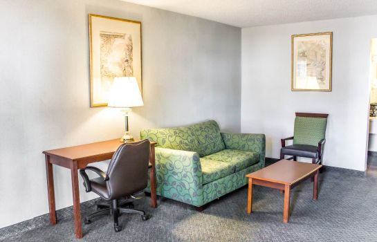 Zimmer Econo Lodge and Suites