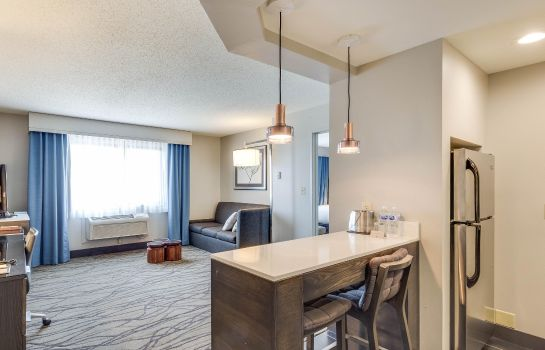 Suite DoubleTree by Hilton Racine Harbourwalk