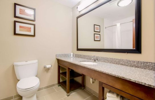 Suite Comfort Inn and Suites North