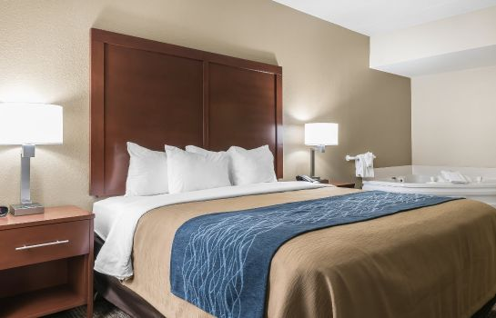 Suite Comfort Inn Indianapolis North - Carmel